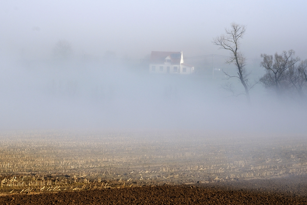 A foggy morning in Westouter.