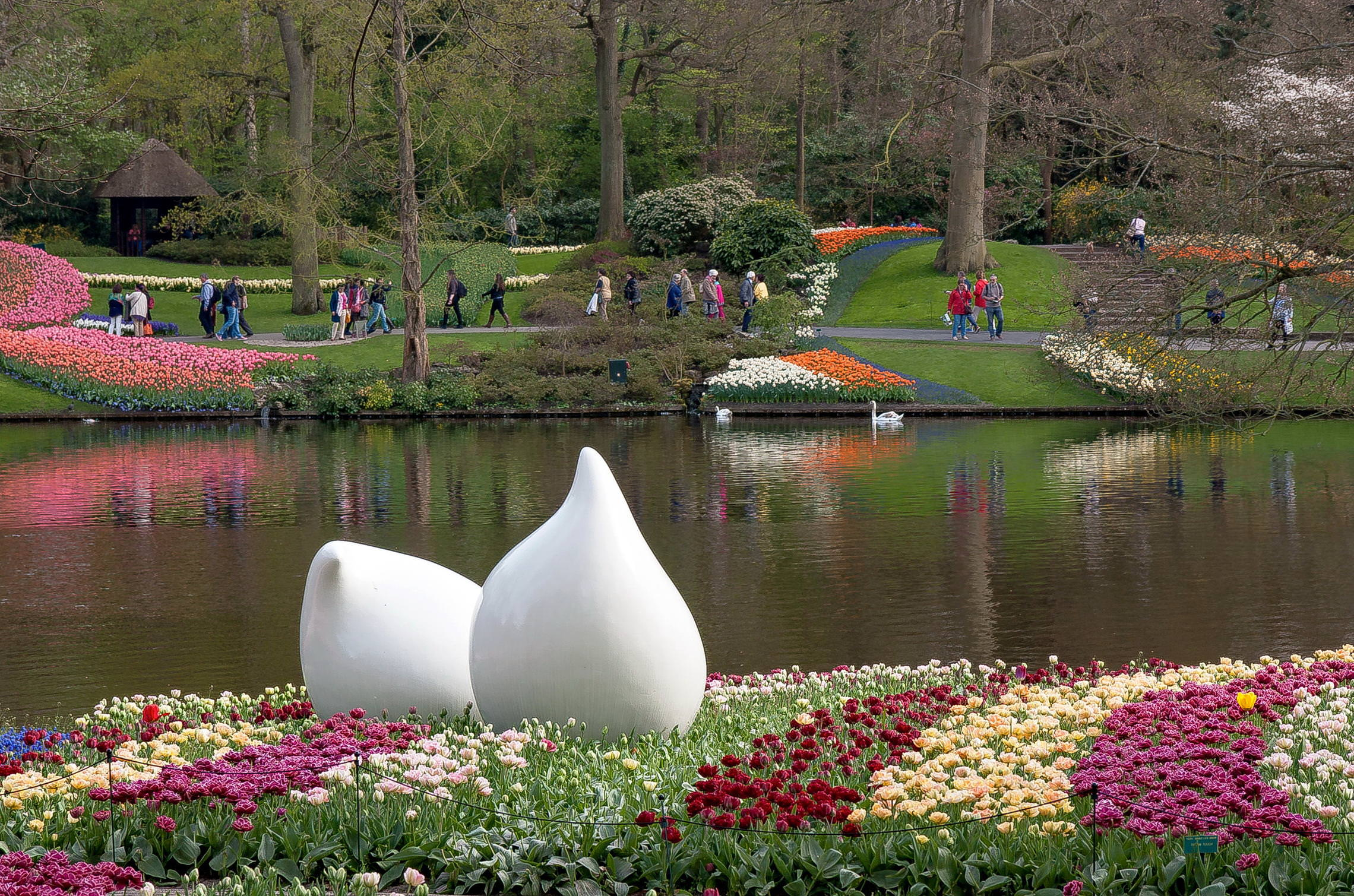 Tulips in Holland 04-2015