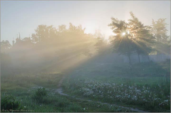 фото вольского туман бантики делают маникюр