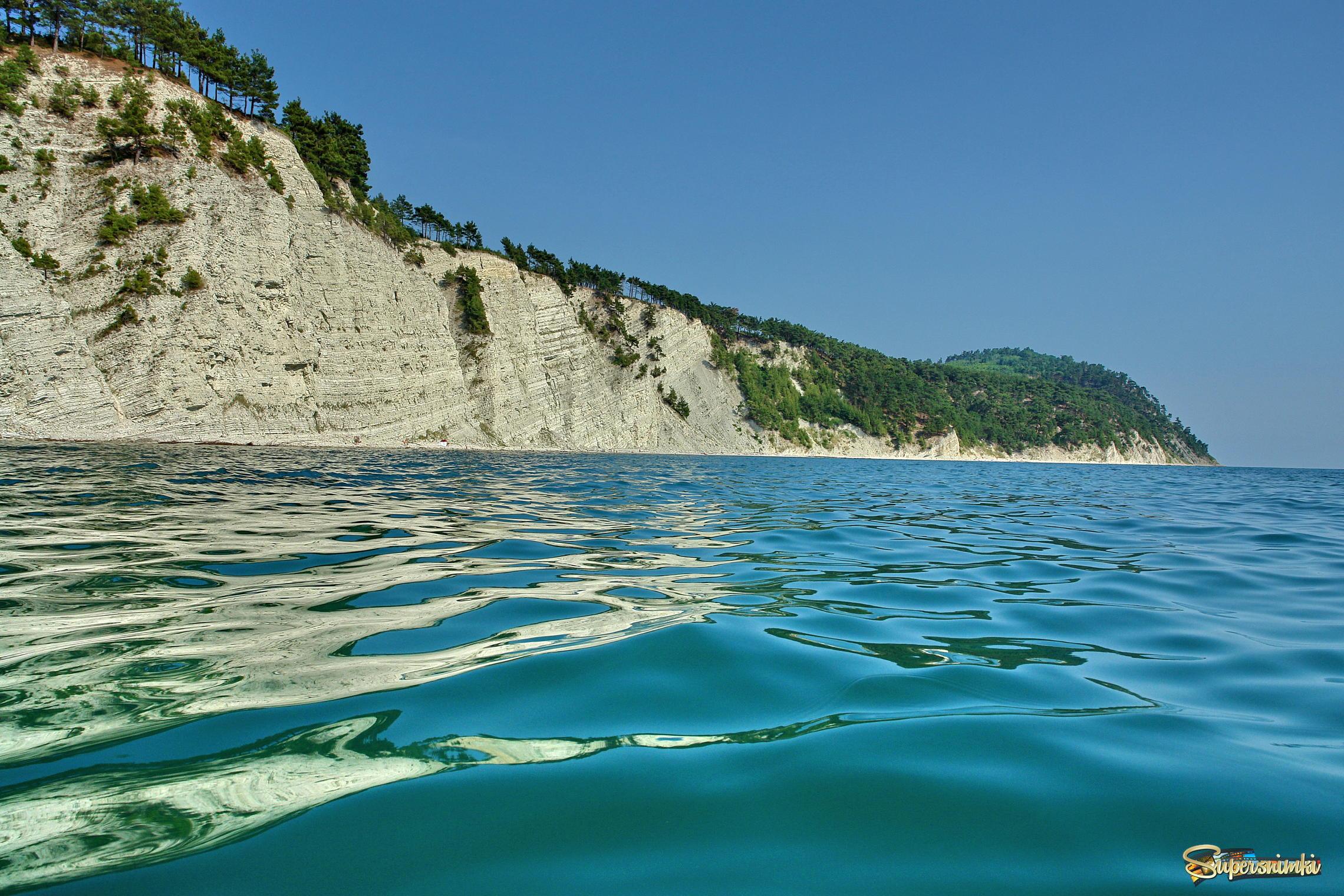 отсутствия здравого отдых на черном море дикарем украина подарок день