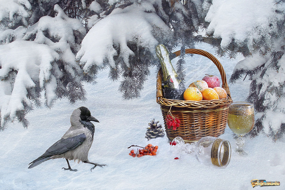 девушка открытка нов ворона заставила