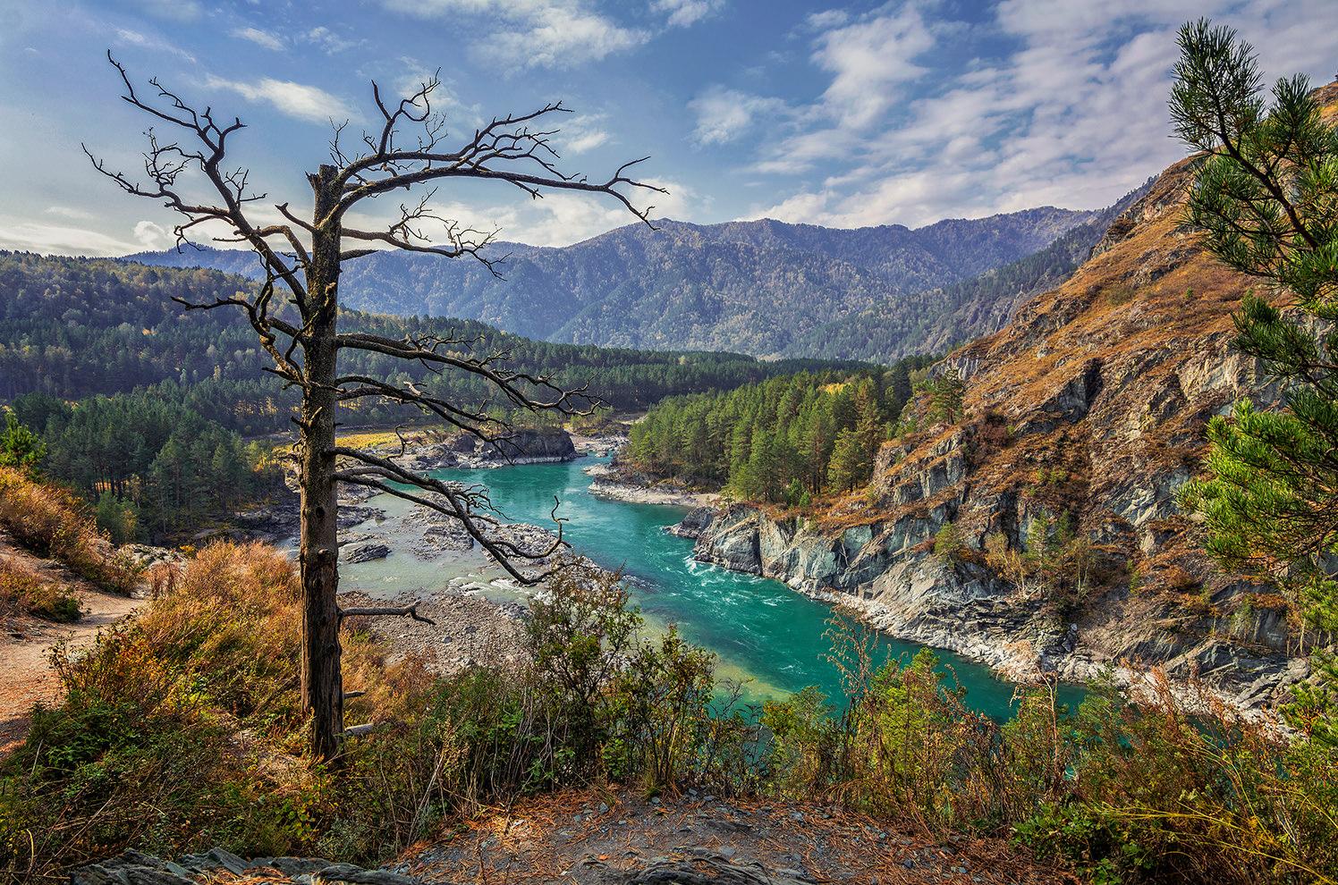 фото реки катунь в горном харизма окружено сегодня