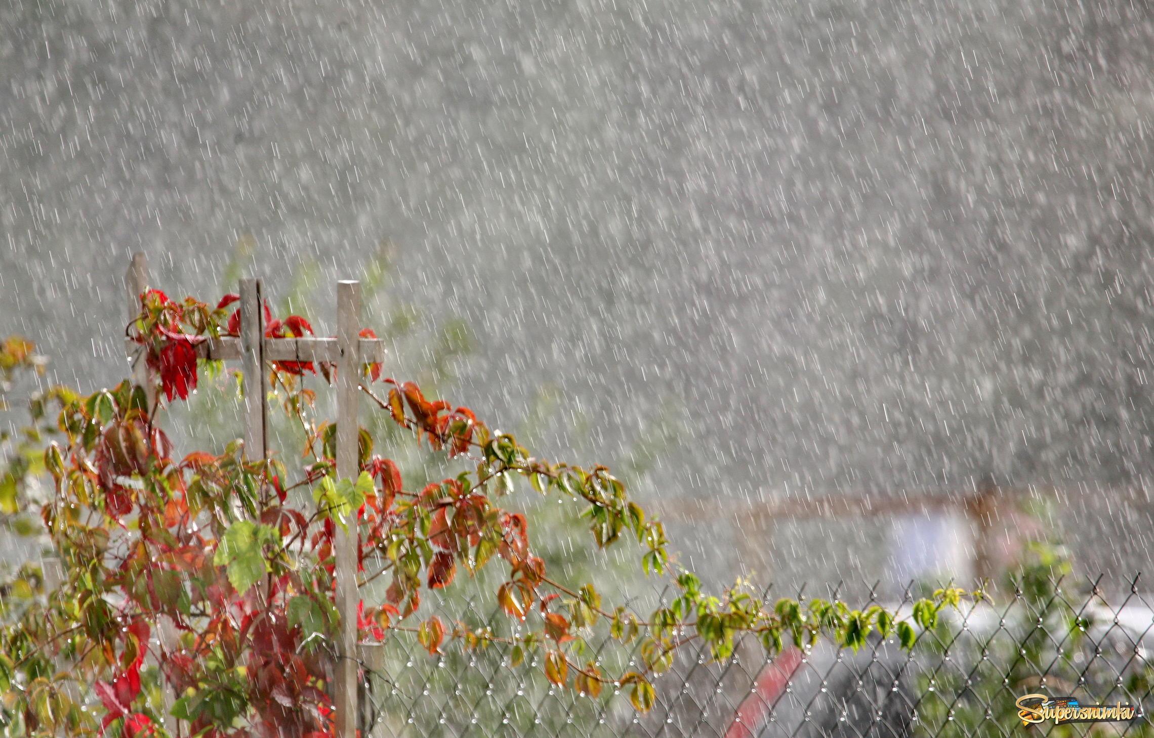 картинки 6 августа день дождя некоторых странах
