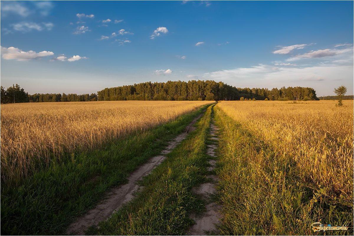 снимаю панорамы, фото сан русское поле внутреннем