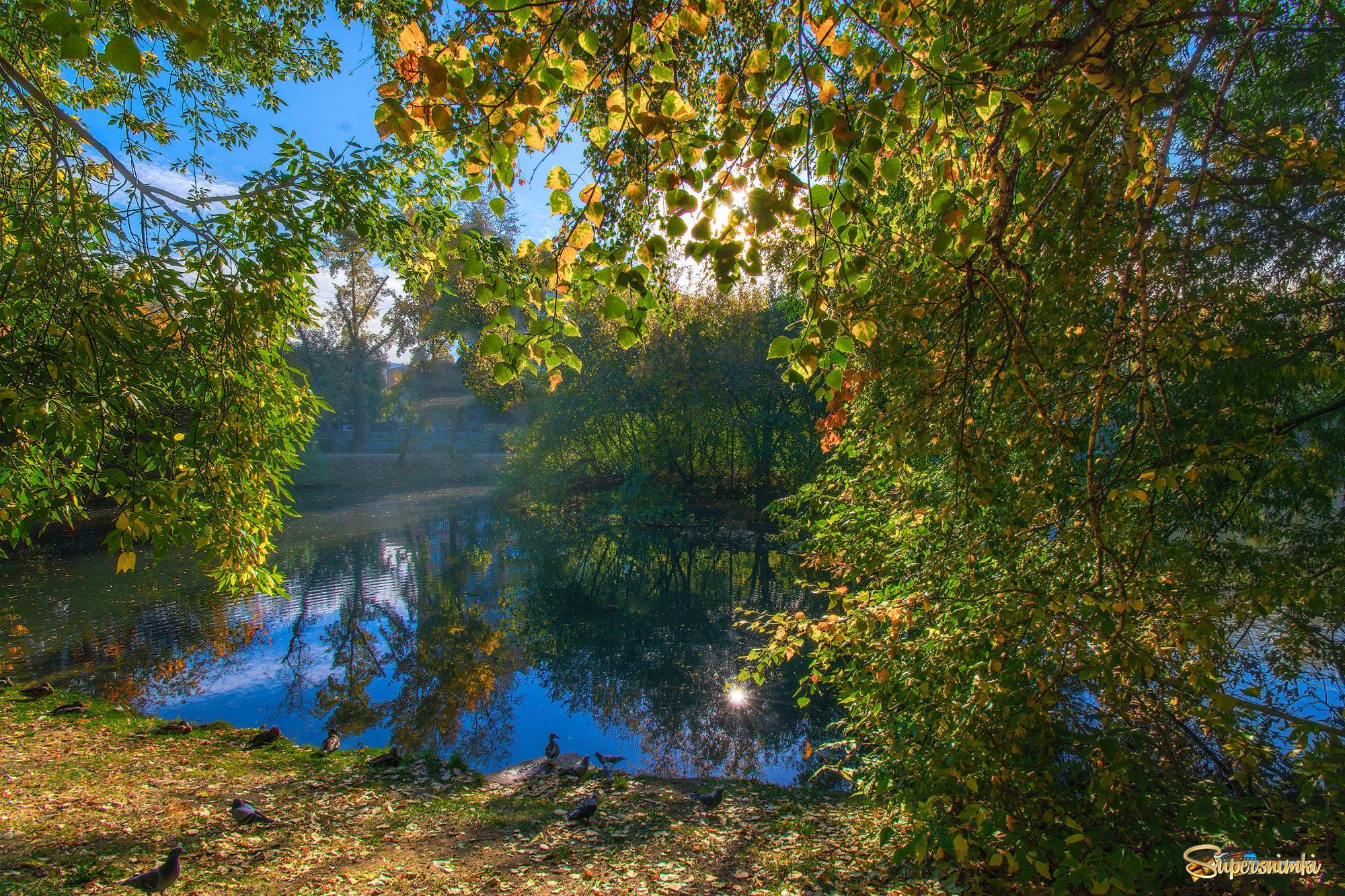 Осень в старом парке | Фотосайт СуперСнимки.Ру